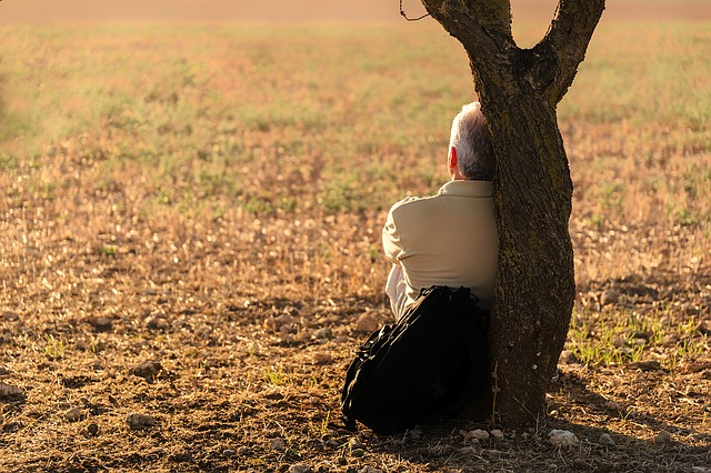 Man sitting against a tree looking out over a field