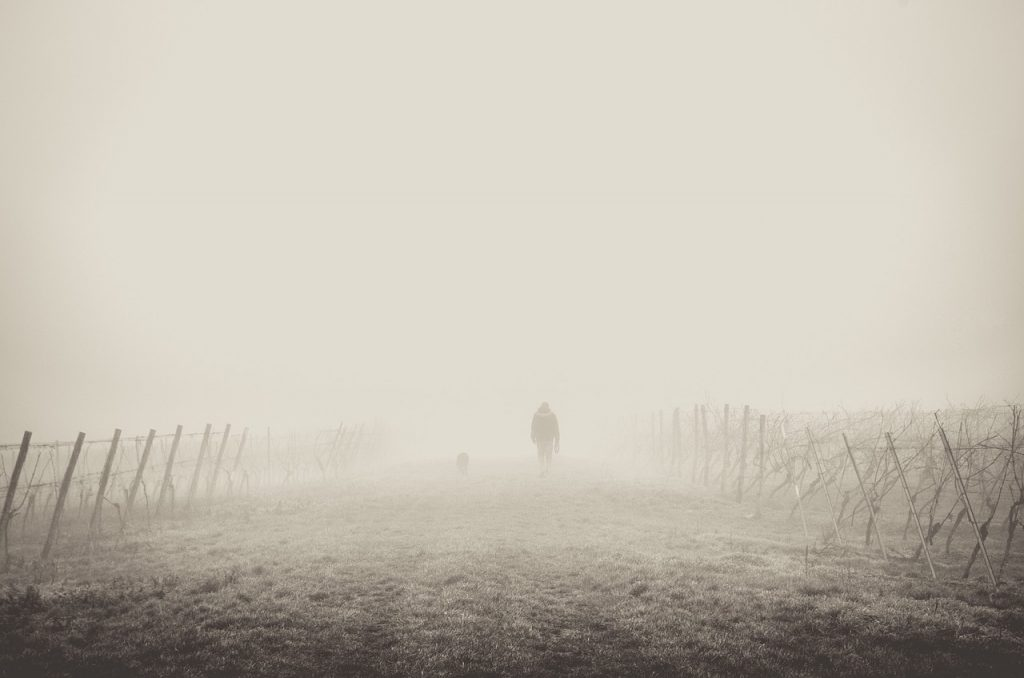 a person walking in the mist