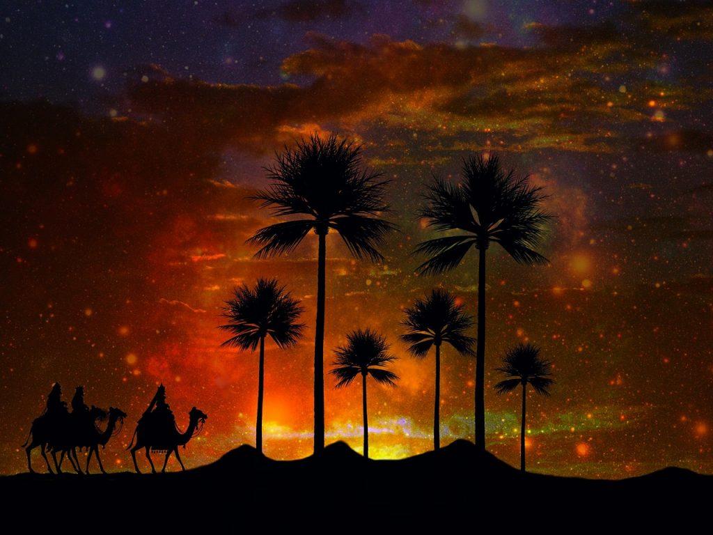 Desert oasis in Arabia